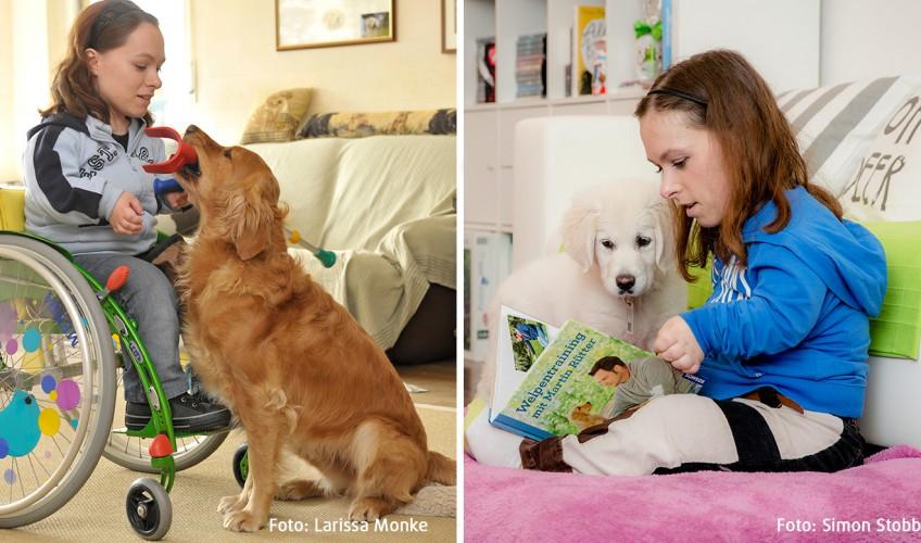Wenn der Herzenshund fehlt – und wie man neu anfängt